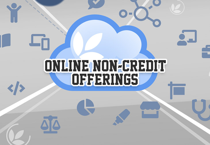 Check out our online non-credit offerings